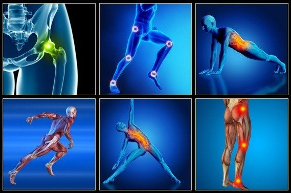 how to repair your hip flexors